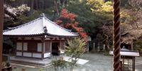 Inilah 5 kebiasaan orang Jepang yang patut ditiru