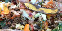 Kurangi sampah makanan layak konsumsi dengan 6 cara ini