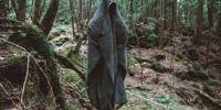 Jika tahu kisah di baliknya, kamu takkan mau mengunjungi 5 hutan ini
