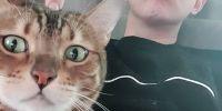 4 Seleb pria Korea Selatan ini sering pamerkan kucingnya di Instagram