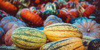 5 Manfaat luar biasa mengonsumsi labu, sangat baik untuk kesehatan