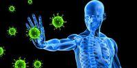 Resep tumis Som Jawa, tingkatkan imunitas tubuh saat pandemi Corona