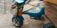 Family, sepeda paling bandel di desa saya