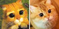 10 Hewan ini mirip dengan karakter dalam film animasi, gemesin banget