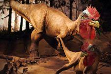 7 Editan gambar ayam dengan binatang lain ini dijamin bikin keheranan