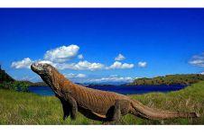 Ini alasan Gubernur NTT ingin tutup kawasan Taman Nasional Komodo