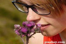 Meski terlihat cantik, hindari 9 bunga beracun ini