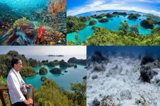 Jadi 'surga' di tanah Papua, ini 4 fakta menarik mengenai Raja Ampat