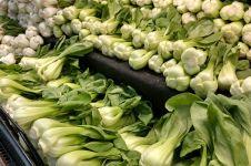 8 Khasiat mengonsumsi sayur bok choy secara rutin
