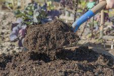 Portable Kompos Maker: Skema alat, cara kerja, dan kelemahan