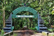 Di balik keangkerannya, Taman Nasional Alas Purwo punya 6 spot keren