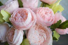 Inilah 3 jenis bunga termahal di dunia, harganya fantastis