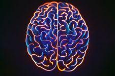11 Latihan sederhana ini mampu mempertajam otak