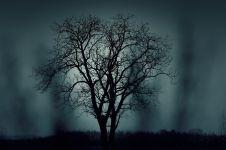 7 Akibat negatif perbuatan syirik kepada Allah