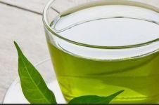Inilah manfaat dan waktu terbaik mengonsumsi teh hijau