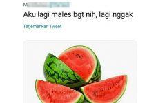 7 Cuitan sambung kata di Twitter dengan nama buah, bikin ngakak