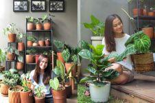 9 Potret Ersa Mayori dan koleksi tanamannya, lengkap bak toko tanaman