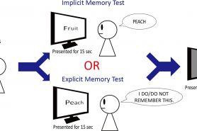 Yuk ketahui apa itu memori implisit dan memori eksplisit