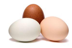 Penelitian ungkap telur ternyata bisa mengobati kanker