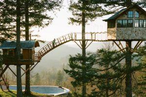 10 Rumah pohon dengan panorama indah ini harga sewanya fantastis