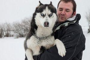 Pelihara 5 anjing yang terkenal ganas ini, kamu pasti disegani!