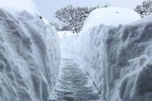8 Potret musim dingin ekstrem di Amerika Serikat, bikin ikut menggigil