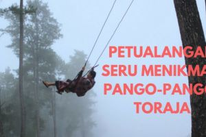 Tak disangka di Toraja ada destinasi wisata seindah ini, yuk kunjungi