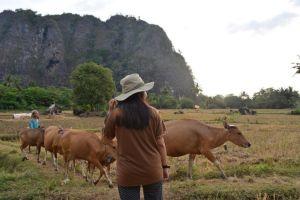 Pesona dunia 'ChalkZone' di Indonesia ini nunggu kamu jelajahi segera