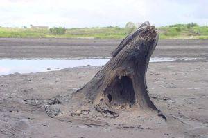 Bukan air, isi dari danau ini malah benda yang tak terduga