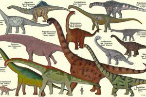 10 Dinosaurus raksasa ini pernah hidup di bumi