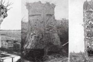 Mengenal Fake Tree, pohon paling mematikan era Perang Dunia I