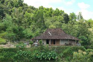 Inilah rumah tua di Gunungkidul Jogja yang sering jadi tempat syuting