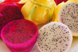 Ini lho 5 manfaat buah naga yang jarang diketaui banyak orang