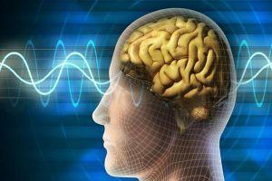 Manfaat puasa bagi otak manusia yang jarang diketahui