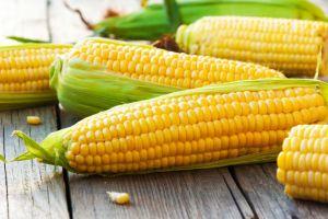 Jangan buang air rebusan jagung, punya banyak manfaat kesehatan lho