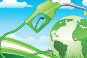 Atasi sampah plastik, ini inovasi dari 3 orang 'Pahlawan Lingkungan'
