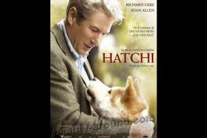 10 Film tentang anjing paling menyentuh sepanjang masa, sudah nonton?