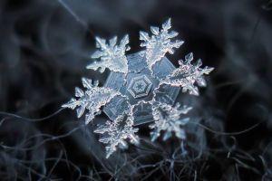 Serba dingin, 8 keajaiban dunia beku ini bakal bikin takjub