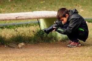 Gini cara lakukan fotografi wildlife dengan kamera smartphone