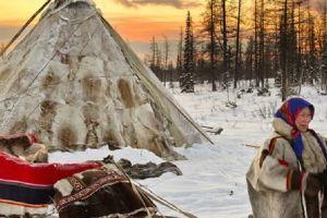 Nenets, manusia penguasa Arktik & penakluk medan terdingin bumi