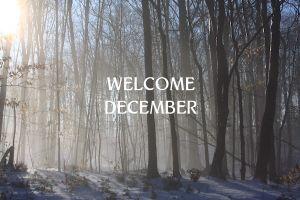 Desember, bulan penutup tahun yang punya banyak hal menarik