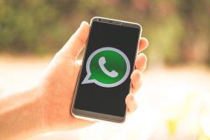 Forward pesan WhatsApp cuma bisa 5 kali, ini alasannya