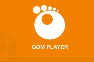 Bosan dengan tampilan GOM Player? Begini cara mengubahnya