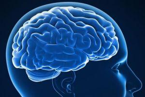 9 Trik mengasah otak agar pikiran tetap tajam dan tak cepat pikun