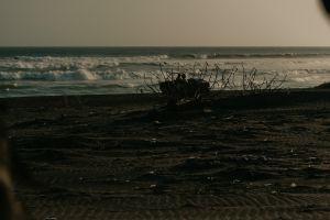 Pesona Pantai Barchan Yogyakarta, pantai indah yang jarang terekspos