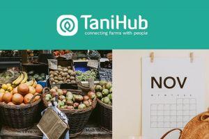 Kalender musim buah di Indonesia versi TaniHub buat para pencinta buah