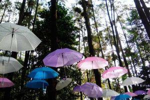 6 Rekomendasi tempat wisata di Banjarbaru, Kalimantan Selatan