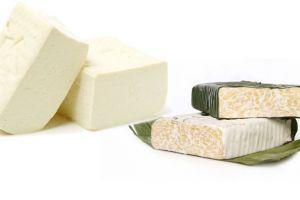 5 Manfaat tempe dan tahu, makanan lezat yang sangat merakyat