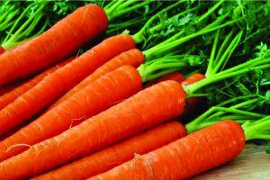 Inilah 5 manfaat wortel bagi kesehatan tubuh
