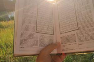 10 Tips menjaga hafalan Alquran di tengah berbagai kesibukan